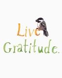 gratitude_smfile